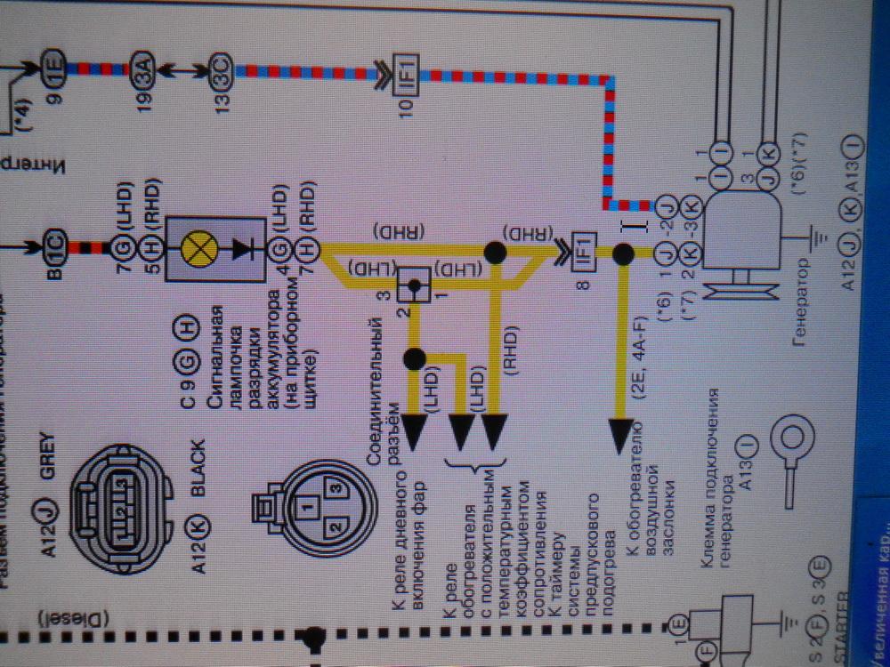 схема фишек гены.jpg